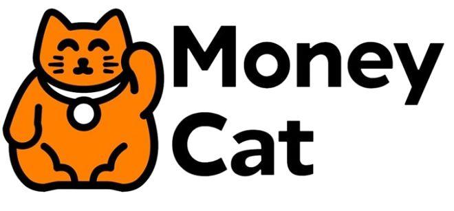 Vay tiền online Money Cat lãi suất ưu đãi